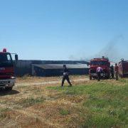 Kadıköy Bıldırcın Çiftliğinde Büyük Yangın