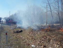 Safaalan'da Orman Yangını