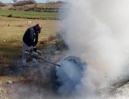 Saray Belediyesi'nden Sivrisinek Açıklaması
