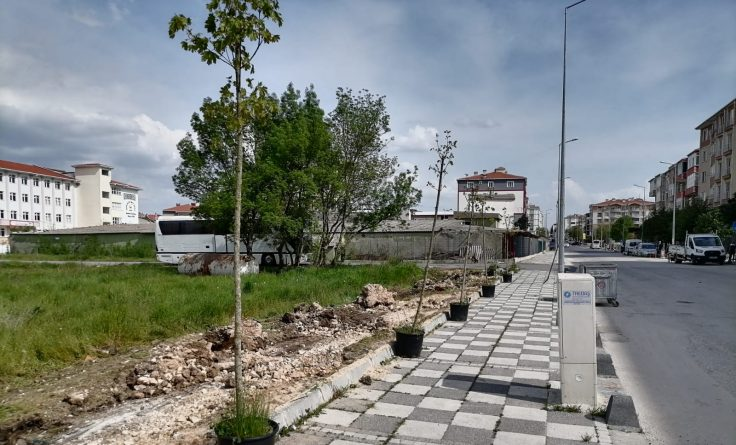 Saray Belediyesi İlçeyi Ağaçlar ve Çiçekler ile Donatıyor